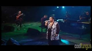 Cesaria Evora - vaquinha mansa(live)