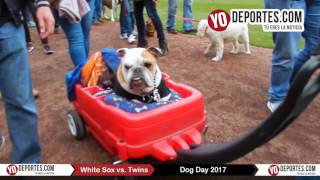 White Sox Dog Day 2017 Guaranteed Rate Field