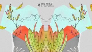 Big Wild - I Just Wanna