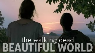 the walking dead | beautiful world