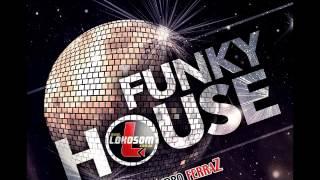 Mega Funk in House 2016 DJLeandro FerraZ
