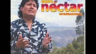 cerveza ron y nectar - GRUPO NECTAR