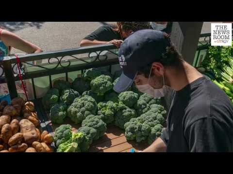 Food Security Initiative aims to help eliminate hunger on campus and bring fresh produce at low cost