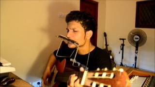 Amazing Michel Telo - Ai Se Eu Te Pego Harmonica with Guitar LIVE
