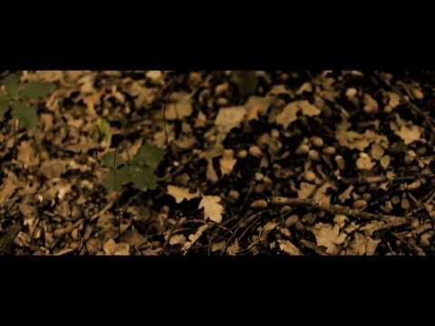 big-scary-autumn-the-big-scary-four-seasons-eps-2010-bigscarytv