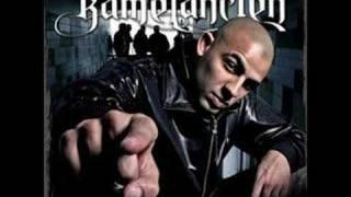 Kamelancien Feat Kery James Sweelym  J resiste