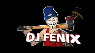 MIX DURA SENTIMIENTOS DJ FENIX