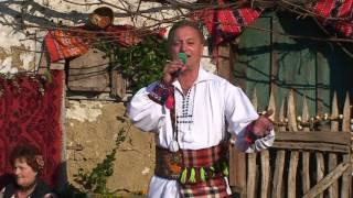 Vasile Bizau - Floare de malin