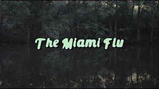The Miami Flu // Live at Quintanilha Rock Festival 2017 (mini video)