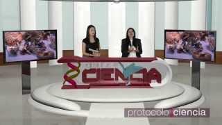 Protocolo Ciencia 25 Hongos