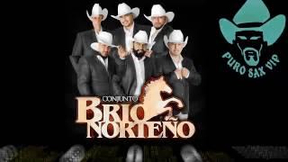 Conjunto Brio Norteño - Adiós Amor ♪ 2017