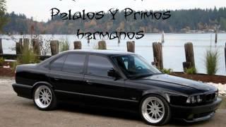 Rocio De Los Pelalos Y Primos Hermanos  Rumbas 2013