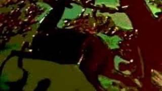 KREIDLER - Reflectuum (Eve Future)