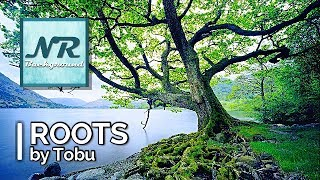 ✰ NO COPYRIGHT MUSIC ✰ Roots - Tobu ✰ NR Background