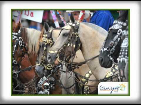 Ruta del Arroz – Turismo en Guayas