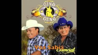 Voa Sabiá - Gino & Geno