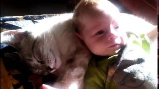 Cat and Newborn baby snuggling & laughing