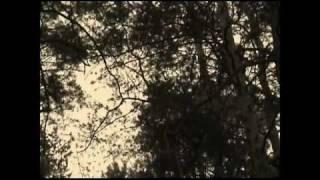 Re-Volt - Po Prostu Spokój (OFFICIAL VIDEO)