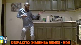 Clifford is back dancing to his ringtone!! Despacito (marimba remix)