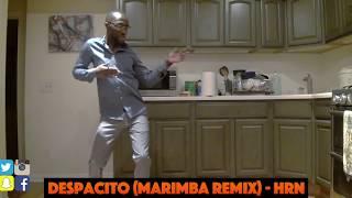Clifford is back dancing to his ringtone!! Despacito (marimba remix)