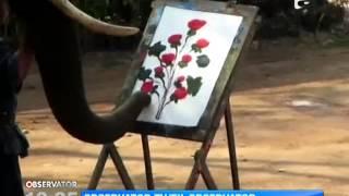 Elefantul pictor