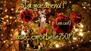 La macarena avec cmoibelle250i ! (en cerf)