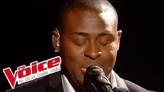 The Voice 2014│Wesley - Laisse moi t'aimer (Mike Brandt)│Prime 2