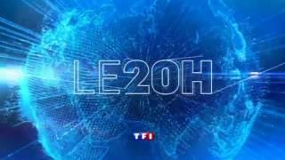 TF1 20H générique 29/12/2013 (Anne Claire Coudray)