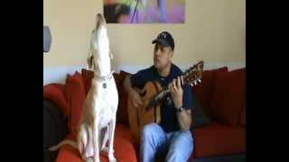 Perros cantando(Laika aullando....!!!!)