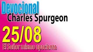 Devocional Charles Spurgeon 25/08 -  El Señor mismo apacienta
