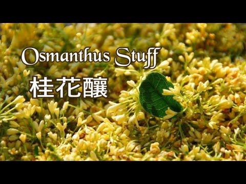 桂花釀|人閒桂花落|桂花還可以做什麼?|Osmanthus Stuff - YouTube