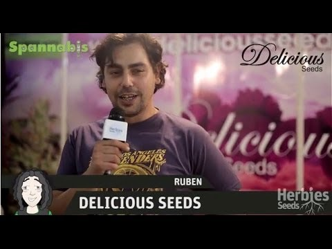 Delicious Seeds @ Spannabis Barcelona 2013