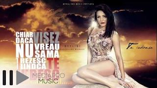Neylini feat Muneer - Te iubesc (official single)