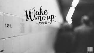 [Lyrics + Vietsub] Wake me up -  Avicii {Cover by Madilyn Bailey}