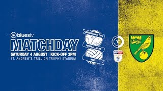 Highlights: Blues 2 Norwich City 2   Sky Bet Championship