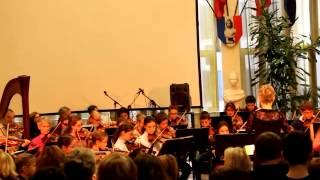 Carré des Arts Telethon 2013 Orchestre sylvie 2