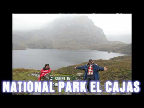 "Mio TOURS IN ECUADOR     "" Ours Andes Tours""  Adventure  # 38"