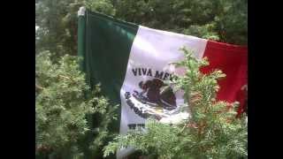 El Mariachi México de Pepe Villa - EL PAJARO CARPINTERO