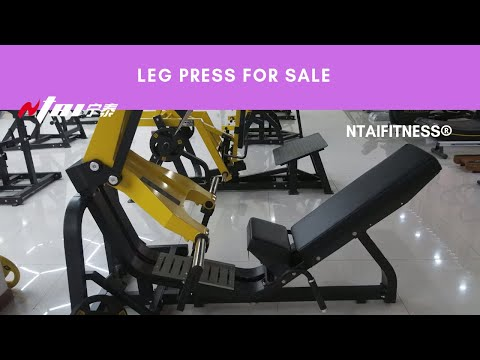 Leg Press Machines - Squat Machines