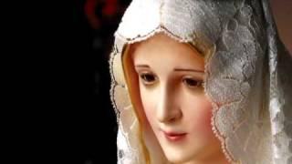 Cantando a oração: Ave Maria