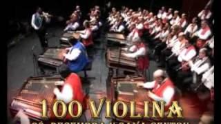 100 CIGANSKIH VIOLINA 28.12.2010. SAVA CENTAR