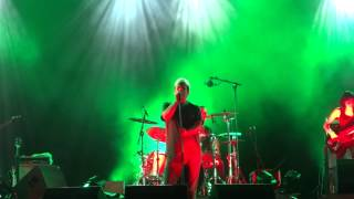 Mão-Morta @ Laurus Nobilis Music Fest - Irmão Da Solidão