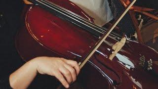 Disney - A Bela e a Fera (Tema) - Musica para Casamento - Curitiba e Região