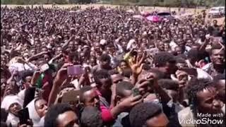 Umar suleyman oromo music 2018