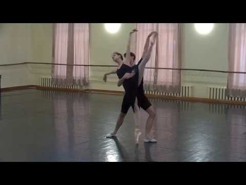World Ballet Day at the National Opera of Ukraine