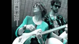 MGMT- The youth lyrics