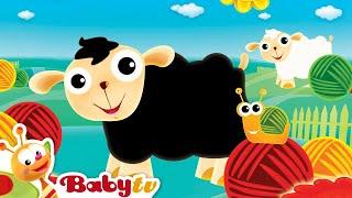 le mouton noirs - BabyTV Français