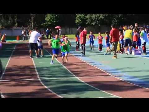 MVI 6733 - YouTube