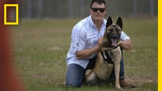 Deze hond redde zijn leven!