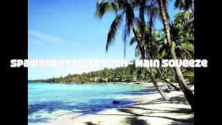 Spawnbreezie ft. Teeh- Main Squeeze